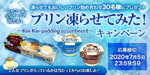 pudding-campaign.png